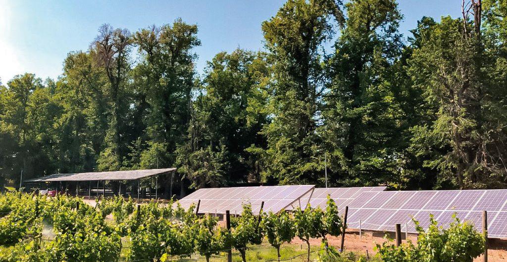 Foto paneles solares vina cousino macul