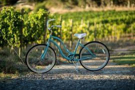 tourprivado_bicicleta_cousinomacul